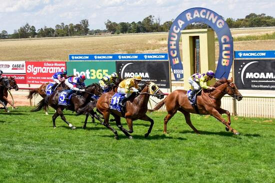 Song Brocade ends the year on a winning note