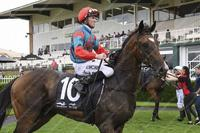Trainer Mitch Newman eyes first big-race success with Garbhan in Tulloch Stakes