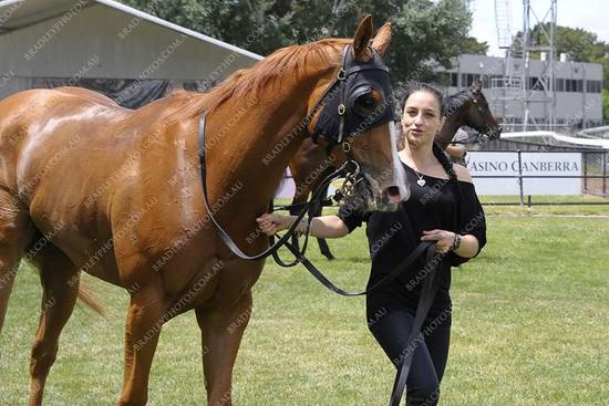 Patience Pays Off For Newman's 'Dainty Filly'