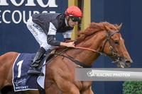 Sapphire win has Written By charging to the Coolmore