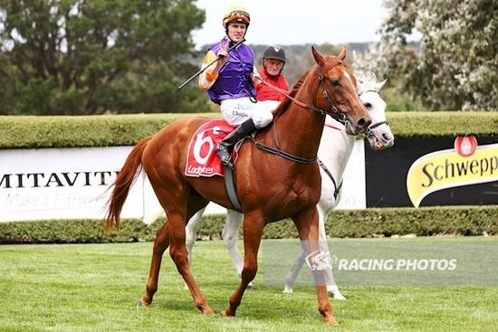 All Too Easy for Exceedingly at Mornington