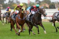 Stakes race test for Andrassy