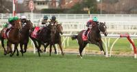 Andrassy chasing stakes success
