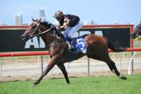 MAN OF HIS WORD WITH WINTER STAKES IN SIGHT