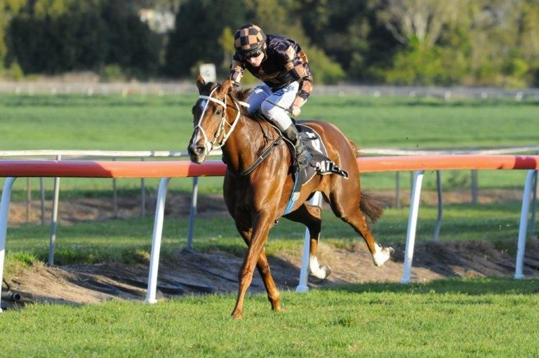 Media Maid cashes in at Lismore #12in16