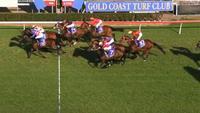 Media Maid brave at Gold Coast
