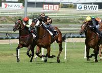 'The Man' headlines big day at Gold Coast trials