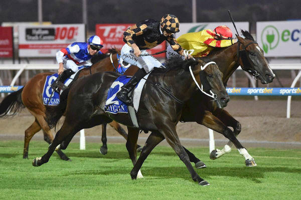 Whizz bang! Gee gets it done under lights