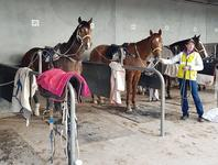 Team Grand youngsters go good at Pakenham