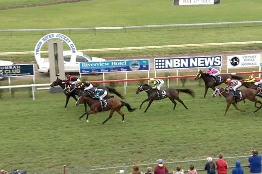 Liberty Island just misses at Murwillumbah
