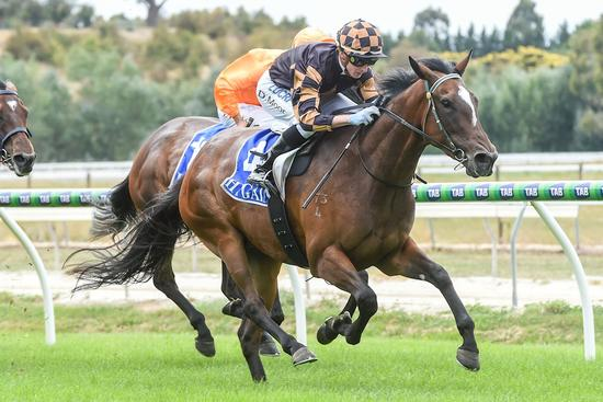 Grand Syndicates Guess Again Returns With Strong 2nd