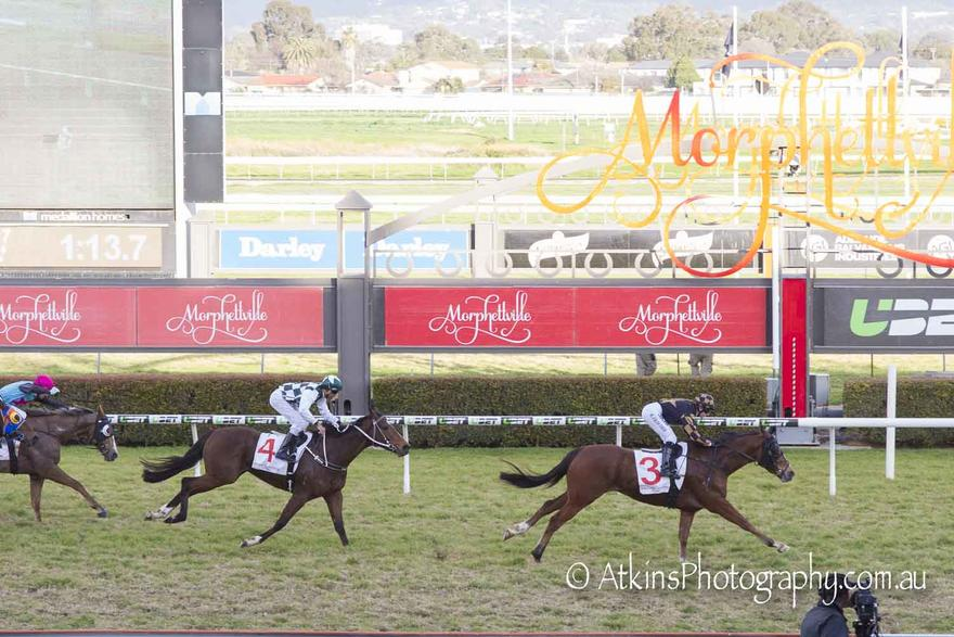 Bajan Lands A Plunge At Morphettville