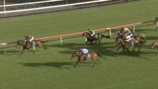 Zoffany's Lad Makes It Four In A Row