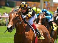 Behemoth Dominates At Moonee Valley