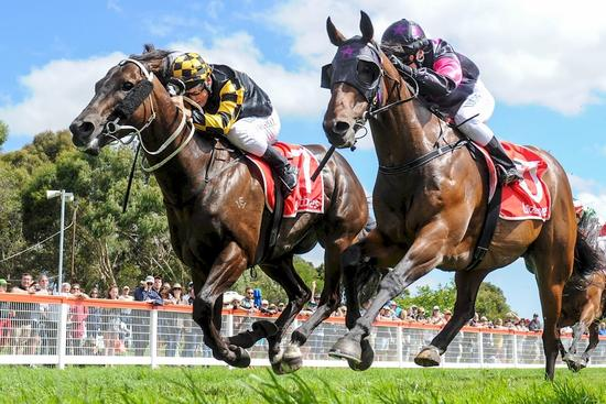 Gee Whizzer Notches Up Sixth Career Win