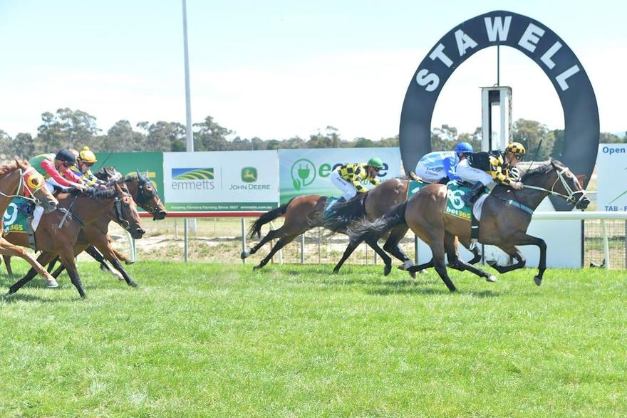 The Winners Keep Rolling For Grand Syndicates!