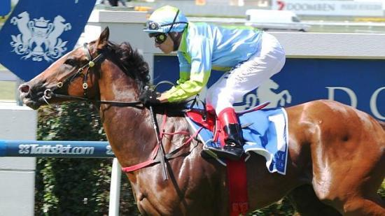 Oakleigh Girl dominant win in the Listed Calaway Gal Stakes