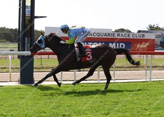 2 Runners 2 Winners on Port Macquarie Cup Day