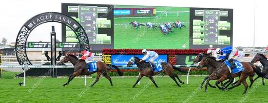 Red Magic, Bougoure and Oliver team up for a Melbourne Cup Day win