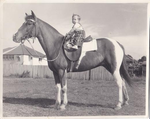 Bougoure's - A Dynasty of Horsemanship