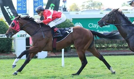 Saturday Doomben Win for Mittere
