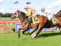 Flinders Dragon defies his double figure odds