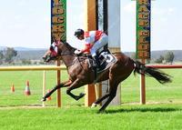 Commentator calls Crafty Spirit win an Exhibition Gallop