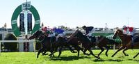 MITTERE PUTS IN HUGE RUN FIRST UP