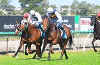 Savvy Acquisition Wins At The Gold Coast