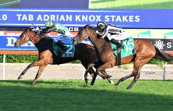 Close call in the Group 3 Adrian Knox