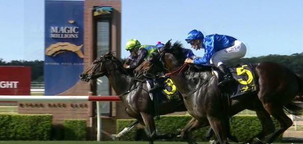 IMPURITY Wins at Wyong