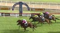 EUROBLAZE wins at Hawkesbury