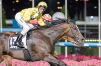 Almighty Filly Wins Typhoon Tracey