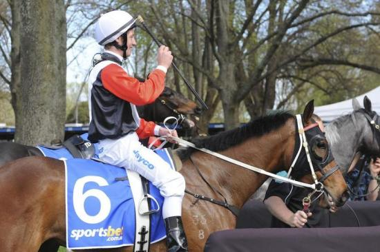 Manu the King of Kyneton after easy win