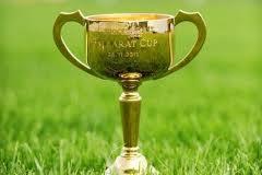 Sertorius a Ballarat Cup drawcard