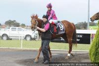 Viper's Victory in Synthetic Stayers Final