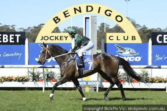 Sertorius to back up in Zipping