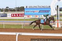 Marcello's Sonata on Song at Geelong