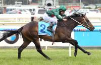 Cup optimism for Sertorius