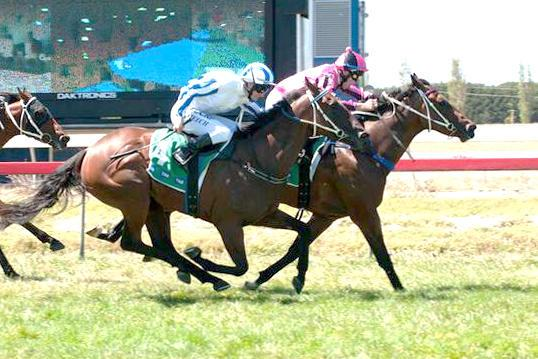 Lord Emsley honours name with debut win