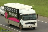 Emsley 8 Horse Transport.jpg