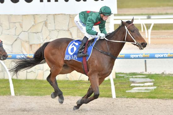 Macrobius wins his way to Stayers' Final