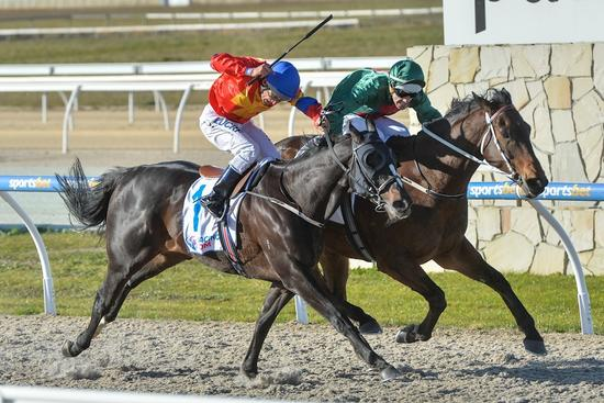Courageous Final win for Macrobius