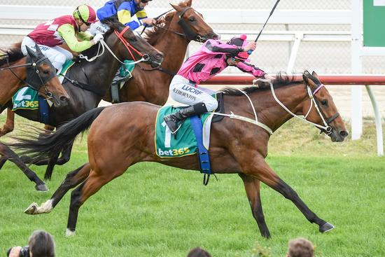Divine win for Crossbearer