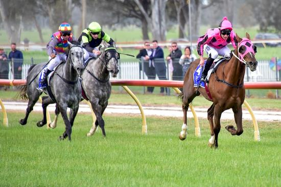 Prince Ziggy marks anniversary with back-to-back wins