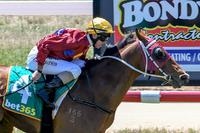 Crafty Lion pounces with maiden win
