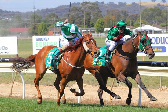 Macrobius digs deep for Wodonga victory