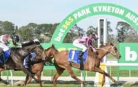 Tiny mare rises to occasion in staying test