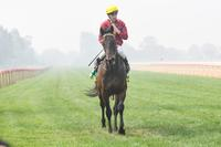 Honeywine breezes through smoke for overdue win