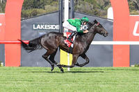 City win sets up Lorenzetti for stayers series